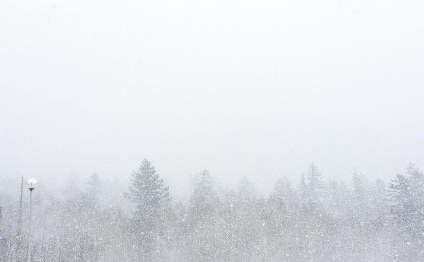今日の十勝岳温泉